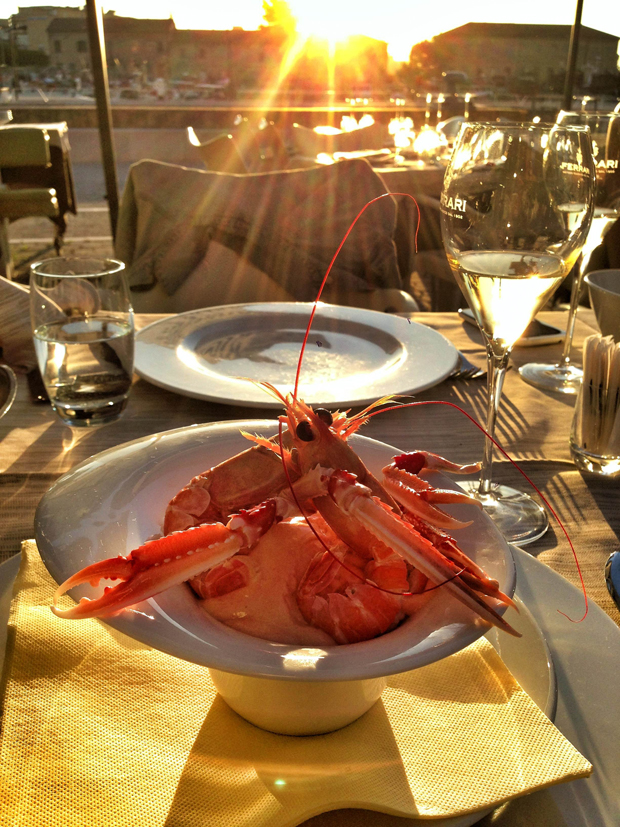 Prawn cocktail + sunset situation = Seriously Senigallia?